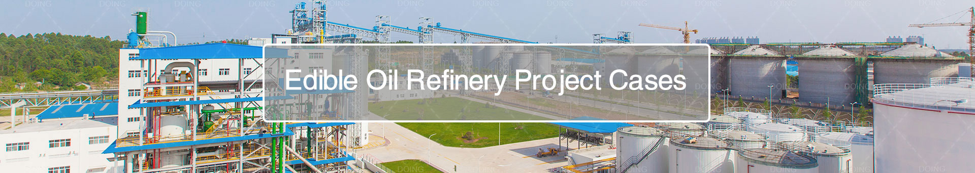 edible oil refinery plant project