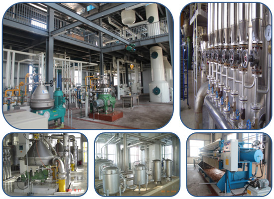 The technology in edible oil refining process