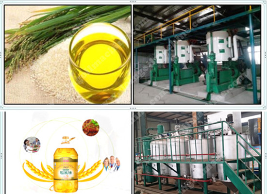 Rice bran oil solvent extraction process machinery