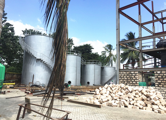 100tpd palm oil refinery & fractionation plant is installing in Kenya