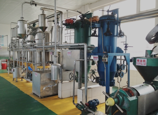 1-10TPD small scale edible oil refining plant
