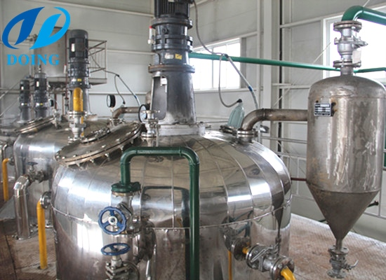 Continuous groundnut oil refining plant