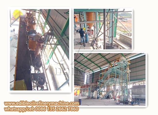 5TPD palm oil refinery plant project report in Indonesia