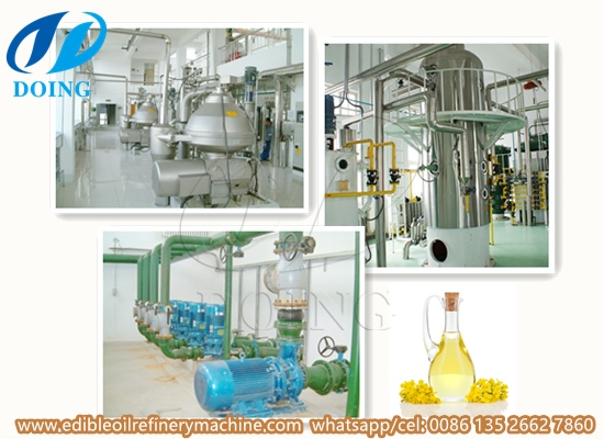 Canola/ rapeseed oil refinery plant