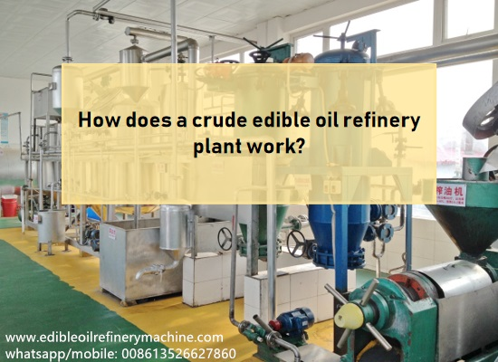 How does small scale vegetable oil refinery plant work?