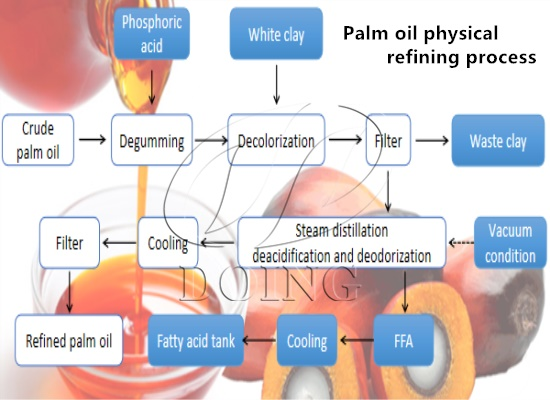 What things need to know about vegetable oil refining of crude palm oil before setting up a palm oil refining plant?