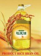 Method of rice bran oil extraction