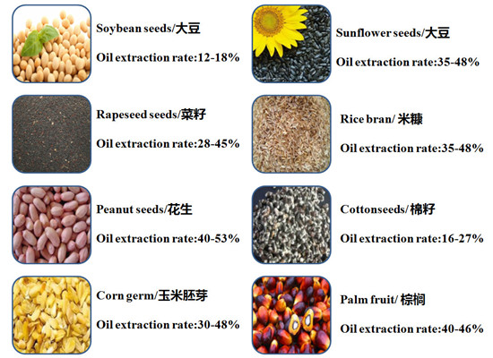 oil seeds and oil extraction rate