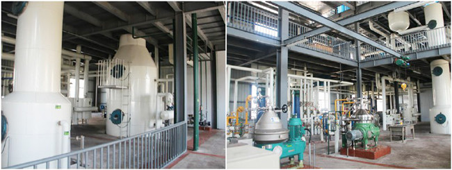 continuous cooking oil refinery plant