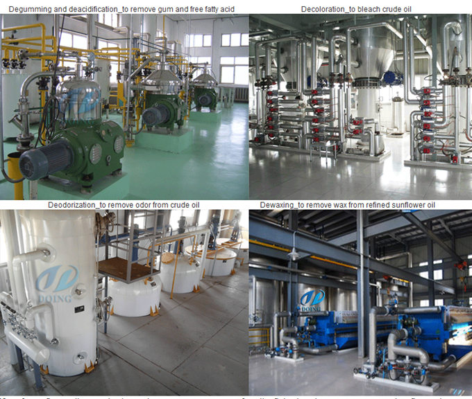 edible oil refining equipment plant