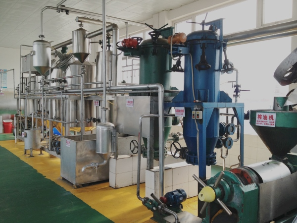 1TPD small scale edible oil refining plant